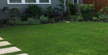 Alamo Heights lawn care